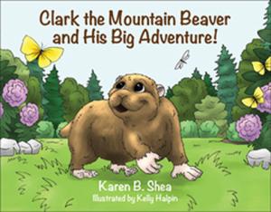 clarkthemountainbeaverbookcover